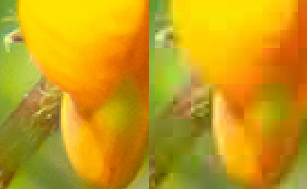 JPEG kvalitet 12 och 1
